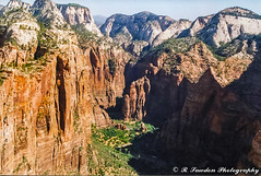 Zion Canyon (R. Sawdon Photography) Tags: canyon rocks trees red zion park angelslanding hills green high hiking
