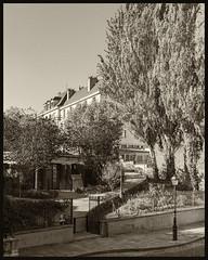 Streets of Montmartre / Улицы Монмартра (dmilokt) Tags: город city town пейзаж landscape сад парк garden park dmilokt чб bw черный белый black white сепия sepia