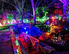 bridges and lights (JoelDeluxe) Tags: rol riveroflights abq biopark nm december 2018 albuquerque biological park pnm light display colors lights sculptures fantasy newmexico hdr joeldeluxe