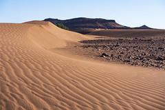 Soft meets hard (Markus Jansson) Tags: sahara desert sand dunes landscape nature rocks mountain morocco