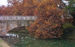 Canal Imperial de Aragón en Zaragoza (joseange) Tags: reflejos otoño puente canal agua zaragoza aragón españa manual lomo t43