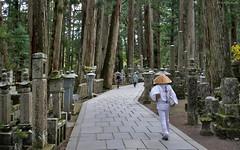 Japan: Koyasan, Okunoin Cemetery (Henk Binnendijk) Tags: wakayamaprefecture graves japan monks okunoincemetery koyasan tombstones gravestones tombs mausoleum unescoworldheritagesite kobodaishi forest