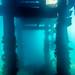 Flinders Pier Underwater-10