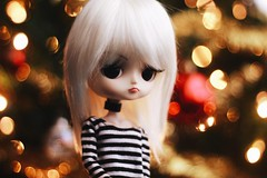 (hauntiing) Tags: pullip pullips dal dals toy toys doll dolls daltezca pullipdoll pullipphotography daldoll dalphotography toyphotography dollphotography bokeh christmas