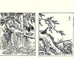 Day-lily, crow and waxwing (Japanese Flower and Bird Art) Tags: flower daylily hemerocallis hemerocallidaceae bird crow corvus corvidae waxwing bombycilla bombycillidae shumboku ooka kano woodblock picture book japan japanese art readercollection