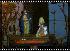 A Blessed [&Merry] Christmas (JoséDay) Tags: merrychristmas blessedchristmas zaligkerstmis fijnekerstdagen kerststal panasonicdmctz10 panasonictz10 panasonic tz10 pointshoot nightshot nightonearth