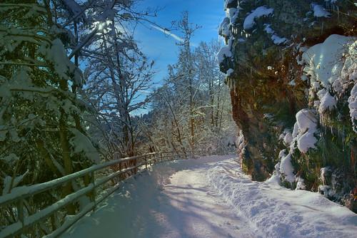 Winterwanderweg von Schönmünzach nach Baiersbronn