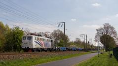 Ein besonderer Gast (Klaus Z.) Tags: eisenbahn kbs 395 leer br 139 güterzug ganzzug lokomotion zebra kastanien frühling