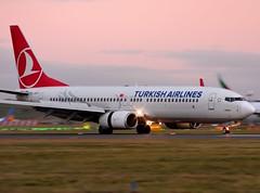 TC-JHV Turkish Airlines (Gerry Hill) Tags: edinburgh airport gerry hill scotland turnhouse ingliston d90 d80 d70 d7200 d5600 boathouse bridge nikon aircraft aeroplane international airline edi egph airplane transport tcjhv turkish airlines boeing 7378f2 b737 b 737 800 8f2