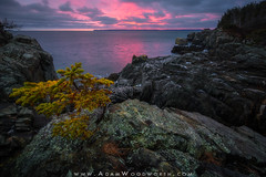 Down East Sunrise (Adam Woodworth) Tags: bayoffundy boldcoast cliffs downeast maine newengland seacoast sunrise winter westquoddyheadstatepark
