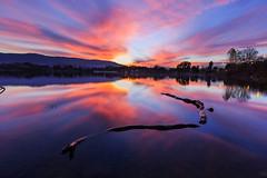 016_0682:  Almaden Lake Park (Shawn-Yang) Tags: almaden lake parksunset sanjose california
