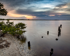 Dawn on the Indian River (Ed Rosack) Tags: olympus landscape calm riverscape water hires ©edrosack panorama florida dock tree river cloud sunrise sky centralflorida shore merrittislandnationalwildliferefuge mangrove usa cloudy dawn minwr titusville us