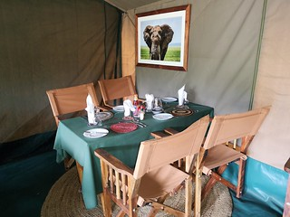 Africa Safari Serengeti Central tents