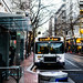 Trimet Route 8 Bus Pulled Into A Downtown Bus Stop