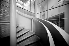 Bonn II (KnutAusKassel) Tags: bw blackandwhite blackwhite nb noirblanc monochrome black white schwarz weiss blanc noire blanco negro schwarzweiss architektur architecture bulding gebäude treppen stairs