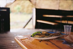 (dariadavydova) Tags: film analog deadpan filmisnotdead analogphoto filmphoto fish meal lunch rain sea summer summerrain minimal empty