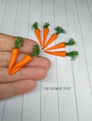 csmg04 (Zhanna Zolotina) Tags: fimo miniature handmade food fake polymer clay tinydolhousetoyzz dollhouse 16