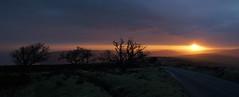 Whitstone Post Trees (EmPhoto.) Tags: exmoor nationalpark dawn sunrise uk sonya7rm2 landscapepassion emmiejgee pano panorama