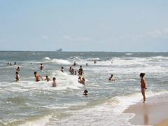 IMG_5783 (Бесплатный фотобанк) Tags: азовское море пляж россия краснодарскийкрай