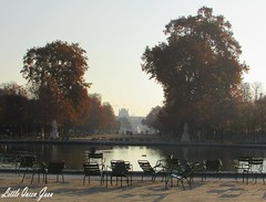 Morning Walk To The Tuileries (Little Queen Gaou) Tags: forest bois wood forêt garden jardin tuileries paris capitale france discovery découverte travel voyage november novembre season saison automne autumn hiver winter feuilles leaves architecture louvre museum musée quais water seine mist brume brouillard morning matin photography photographie inspiration paysage landscape triumphal arch