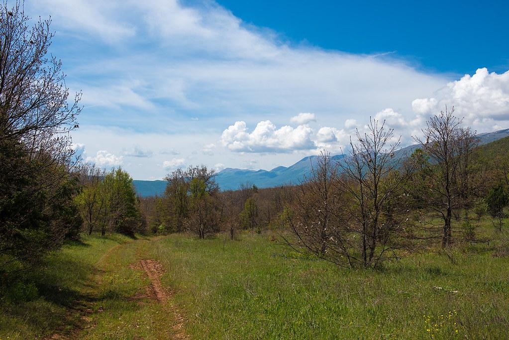фото: Macedonian