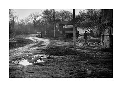 Village road in the afternoon sun (Paphylo) Tags: countryside blackandwhite road ukraine monoart leicacl people reallife chernigov afternoon monochome village countrylife document