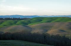 """ Going to Asciano. "" (pigianca) Tags: italy siena cretesenesi landscape test leicam10 leicateleelmaritm90mmf28"