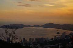 ACAPULCO GUERRERO (gonzalo_soberanis@hotmail.com) Tags: s sonyalphaa37 acapulco macrofoto sony