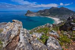 Hout Bay (NettyA) Tags: 2017 africa capefloristicregion capetown day3 hoerikwaggotrail houtbay southafrica tablemountainnationalpark unescoworldheritage flora hike hiking rock sandstone travel wildflowers fynbos landscape