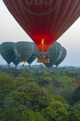 Ballons  à la découverte des pagodes (Patrick Doreau) Tags: vol flight balloon montgolfière pagodes bagan myanmar birmanie aube survol pagoda voyage trip arbre ciel