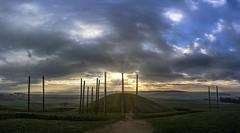 Celtic dawn (Parchman Kid (Jerry)) Tags: keltenwelt am glauberg glauburg germany celtic burial site old museum sunrise time landscape parchmankid sony a6000 kit lens