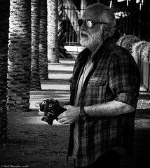 Shades and snaps (Neil. Moralee) Tags: neilmoralee spainneilmoralee man camera canon glasses sun shades sunnies photo photographer candid street malaga spain beard black white bw bandw blackandwhite waiting shade tree palm shadows neil moralee nikon d7200 shirt watch watching monochrome mono balding hair arm hairy old mature senior citizen dslr