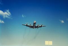 Electra Landing at Essendon Airport (oz_lightning) Tags: 35mmslrcamera 35mmfilmcamera australia canonpixmamg8150 filmscan hanimexcs50 melbourne strathmore vic yashicaj3 yashinon50mmf2lens action aeroplanes film scan sign sky slide victoria aus