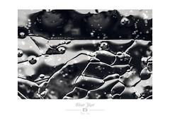Petit bonhomme (Nibor Jiher) Tags: eau glace macro noirblanc abstract abstrait