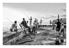 LA PESCA ( La habana-CUBA ) (RAMUBA) Tags: blanco y negro pesca la habana cuba malecon black white