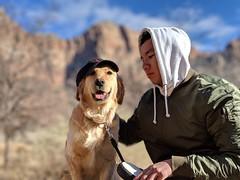 00100lPORTRAIT_00100_BURST20181228143643938_COVER (KevinXHan) Tags: zions national park dog golden retriever cute aww parus trail hike walk nature outdoors google pixel3 photoblog photodiary