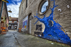 Hollowed Tree, 2018.11.06 (Aaron Glenn Campbell) Tags: gritty textures oldcityjava alley oldcity downtown knoxville murals art graffiti wallart creativity creatives 3xp hdr ±3ev macphun skylum aurorahdr nikcollection viveza colorefexpro sony a6000 ilce6000 mirrorless rokinon 12mmf2ncscs wideangle primelens manualfocus emount