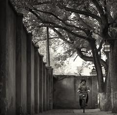 XinChang_cyclist :(新场)a suburban canal town south of Shanghai (Charles R. Yang) Tags: bike cyclist tree wall lane errand bw monochrome streetphotography canaltown china shanghai