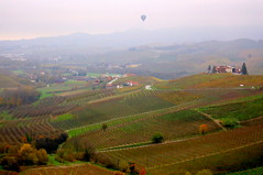 Ballooning on the Langhe (annalisabianchetti) Tags: balloon mongolfiera ballooning landscape langhe piemonte italy travel rural countryside country vigneti vineyards hills colline autumn autunno