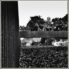 Lines & Beyond #4 (Napafloma-Photographe) Tags: 2018 architecturebatimentsmonuments artetculture aveyron bandw bw bâtiments fr france géographie kodak kodaktrix400 muséesoulage métiersetpersonnages personnes rodez techniquephoto blackandwhite boutique monochrome musée napaflomaphotographe noiretblanc noiretblancfrance pellicules photoderue photographe photographie province streetphoto streetphotography