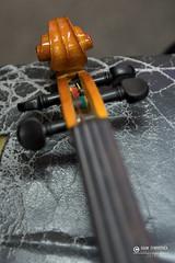 """foto adam zyworonek fotografia lubuskie iłowa-5361 • <a style=""""font-size:0.8em;"""" href=""""http://www.flickr.com/photos/146179823@N02/44487025700/"""" target=""""_blank"""">View on Flickr</a>"""