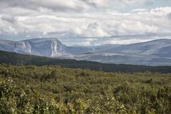 Pure (BlossomField) Tags: landscape mountain nature bodø nordland norwegen nor