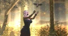 Be set free... (Caresia Adored) Tags: firestorm secondlife mandala truth truthhair blueberry sl virtualblogger virtualworld lea lindenendowmentforthearts maitreya catwa gosee secondlifeblogger whitewidow