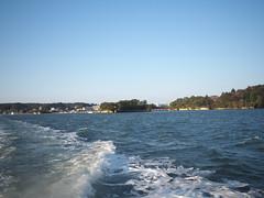 PB114531 (senngokujidai4434) Tags: 日本三景 島 island 松島 matsushima 宮城 miyagi japan japanese