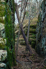 2018-11-11 Giant City State Park (Brent A. Jones) Tags: giantcity nature autumn fall rocks