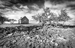 The Lost Outpost (Ffotograffiaeth Dylan Arnold Photography) Tags: church derelict countryside holy ruin desolate remote ancient monument building windswept blackandwhite monochrome mono landscape anglesesy tree hawthorn twisted rocks field sky clouds contrast abandoned forgotten medieval historic relic trees rural blackthorn