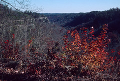 Red River Gorge, Kentucky (Roger Gerbig) Tags: redrivergorge kentucky rogergerbig canoneos3 canonef28105f3545 kodachrome200 kl200 slidefilm 135film 35mm