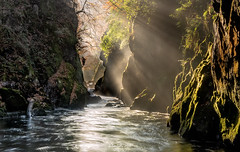 Fairy Glen (Mark Palombella Hart) Tags: snowdonia river flowingwater wales autumn photography photographer photooftheday potd photo mountains hills gorge waterfall green rocks