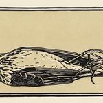 Dead bird (1919) by Julie de Graag (1877-1924). Original from The Rijksmuseum. Digitally enhanced by rawpixel. thumbnail