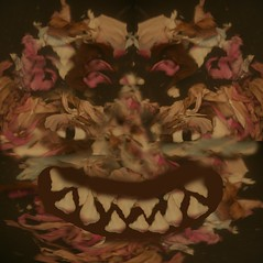 7218337586_eac99f7828_o (Idosomethingnew) Tags: digitalmanipulation digital assemblage witch blurry collage photocollage surreal dark dreamy dreamscape hallucination psychedellic fabric autumn gold hazy dream haze experimental experimentalart